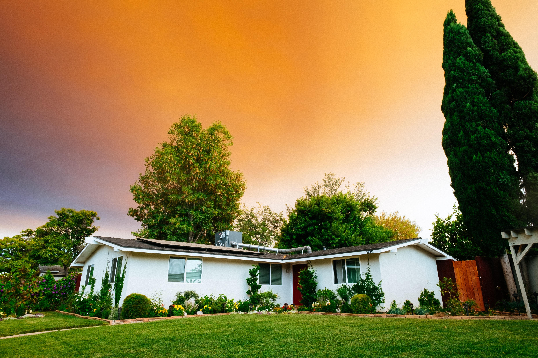 Gartenunterhalt Eisenberg, Pflanzenschutz, Bepflanzungen, Garten, Gartenpflege